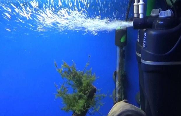 фильтрация и аэрация аквариума с растениями