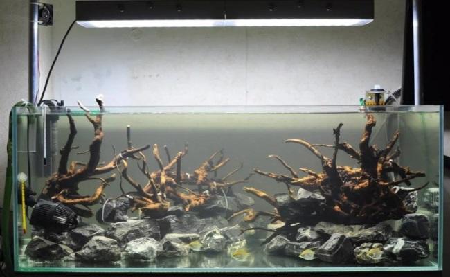аквариум без грунта
