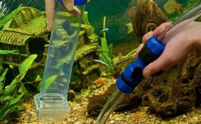 как почистить грунт в аквариуме