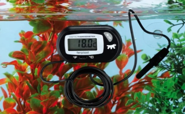 электронный градусник для аквариума